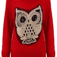Pretty Red Owl Knit Pullover  C000005