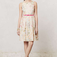 Anthropologie - Sketched Arceau Dress