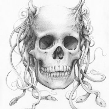 Medusa Skull Pencil Drawing, Snakes Art Print by Olechka