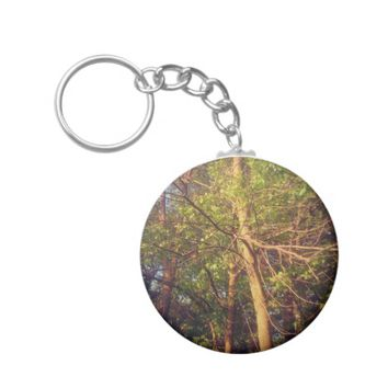 Looking Up Keychain