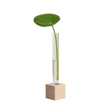 IN STORE PICK UP/DELIVERY ONLY! Hold Onto Your Plants -  NEW Single Propagation Station