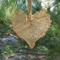 Still Life Leaves - GOLD 'COTTONWOOD' STILL LIFE LEAF  **While Supplies Last**