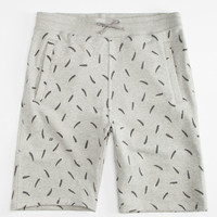Nike Sb Everett Fern Shorts Heather Grey  In Sizes