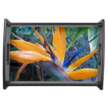 Bird of Paradise 2 Floral Serving Tray
