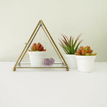 Vintage Glass Pyramid Display Box - Triangle Terrarium Container