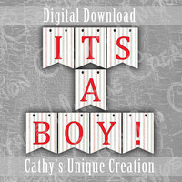 Baseball It's A Boy Banner, Its Baby Shower, Theme Gender Reveal Party, Photo Prop, Printable, Wall Sign, DIY Digital Download Decoration