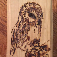 Wooden owl box