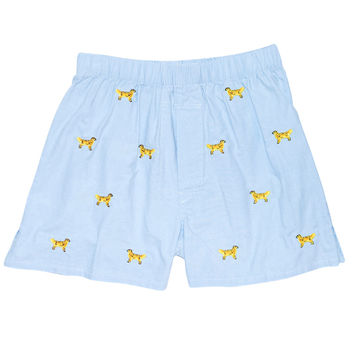 Barefoot Boxer Blue Oxford with Golden Retriever