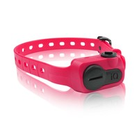 Dogtra iQ No Bark Dog Collar in Pink | Petco Store