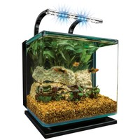 Marineland Contour Glass Aquarium Kit with Rail Light, 3-Gallon