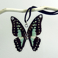 The Blue Jay Real Butterfly Wing Necklace