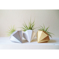 Natural Gem Planter