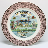 Wisconsin Souvenir Plate Printed Graphics with Pink and Gold Metallic Border