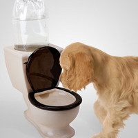 Doggie Toilet Water Bowl
