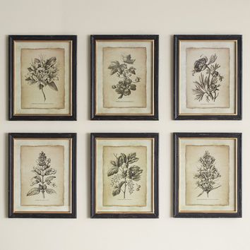 Antiqued Stems Wall Art