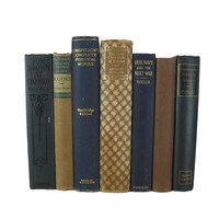 Blue and Brown Decorative Set of Books, S/7