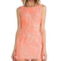 Ladakh Farrow Lace Dress in Pink