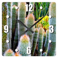 Chic trendy stylish orange green fuzzy cacti photo square wall clock