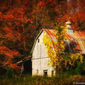 Nature Photography, Old Barn, Fall Colors, Autumn Photo, Fine Art Print, Orange Red Brown, Country Style, Moody, Home Decor