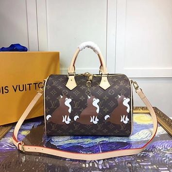 LV Louis Vuitton MONOGRAM CANVAS LARGE NANO SPEEDY HANDBAG SHOULDER BAG