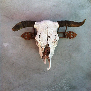 Take the Bull by the HornsTruly Vintage Skull with Horns--Perfect for Cabin, Office, Fireplace Mantle