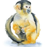 Monkey Watercolor Painting - 11 x 14 - Giclee Print - Squirrel Monkey