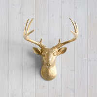 The Virginia Gold Faux Mini Deer Head