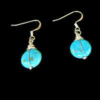 Aqua Agate Stone Drop Earrings