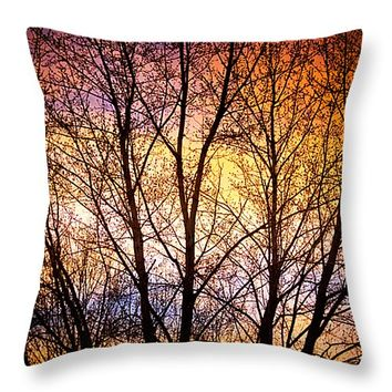 "Magical Colorful Sunset Tree Silhouette Throw Pillow 14"" x 14"""