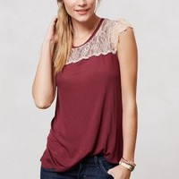 Eyelash Lace Tee by Eloise Wine S Apparel