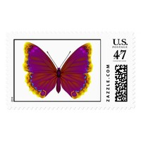 Tropical butterfly stamp