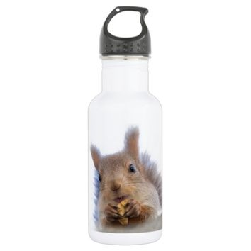 Squirrel with a walnut stainless steel water bottle