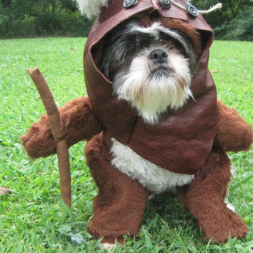 Ewok Star Wars Dog Halloween Costume