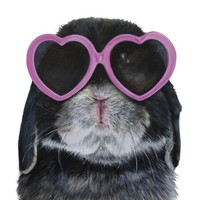 """Bubba loves Heart Glasses"" - Art Print by Bubba  loves"