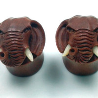 "Custom Hand Carved Organic ""Elephant Head"" Saba Wood Plugs with Real Bone Tusks - 00g - 3/4"""