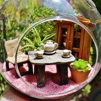 """Mother's Day Terrarium Kit - Medium 5.5"""" Globe ~ Air Plant ~ Home Decor ~ Little Kitchen Scene ~ Gift ~ Mother's Day Gift ~ Limited Edition"""