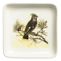 H&M - Mini Plate - White/Bird