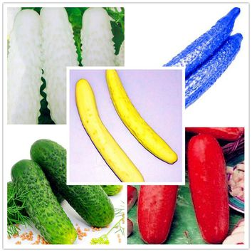 Hot selling!100pcs cucumber seeds japan  cucumber vegetable and fruit seeds for home pot garden,Green red white