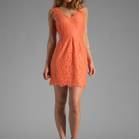 Joie Rori Lace Dress in Hot Coral from REVOLVEclothing.com