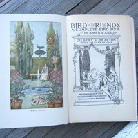 Bird Friends: A Complete Bird Book for Americans by G.H. Trafton; Black & White and Color Illustrations; 19th-Early 20th Century Birds