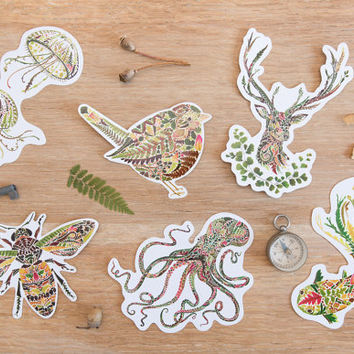 2 Vinyl Sticker packs (of 3) -  Natutical theme: Octopus / Goldfish / Fellyfish & Woodland theme - Stag / Honey bee / Wren- Pressed fern art