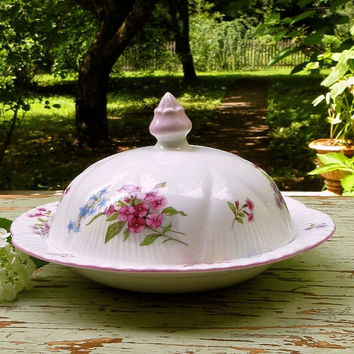 Vintage Shelley Butter Dish with Lid - Pink Floral - England - Fine Bone China - Rose Finial - Round Shape - Cottage Decor
