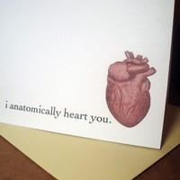 i anatomically heart you  not just a valentine card by letterhappy