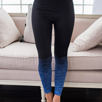 Champion Stripe Activewear Leggings (Royal Blue)