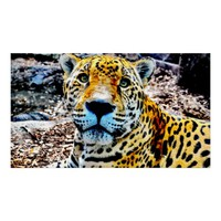 47 X 27 JAGUAR PREMIUM CANVAS GLOSS POSTER