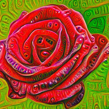 Red Rose Deep Dream Surreal Picture