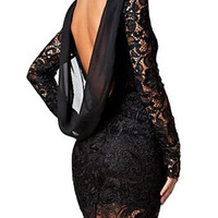 Jewel Neck Backless Long Sleeve Lace Dress