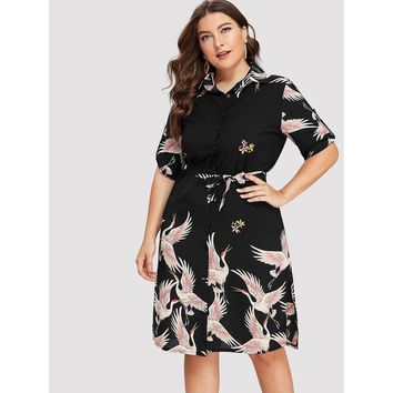 Plus Size Black Collar Half Sleeve Shift Dress