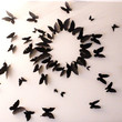 17 Paper Butterfly Shadows Modern 3D Wall Decor for your bedroom & living area. Various in Sizes, inspired by Gossip Girl.