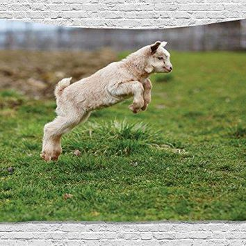 Goat Tapestry Baby Farm Animal Jumping Around Playing in the Spring Blurred Background, Wall Hanging for Bedroom Living Room Dorm, 60 W X 40 L Inches, Beige Brown Fern Green